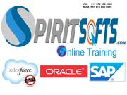 SAP S4 HANA Simple finance online training