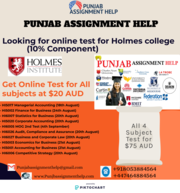 Holmes Online Test Help for $20 AUD